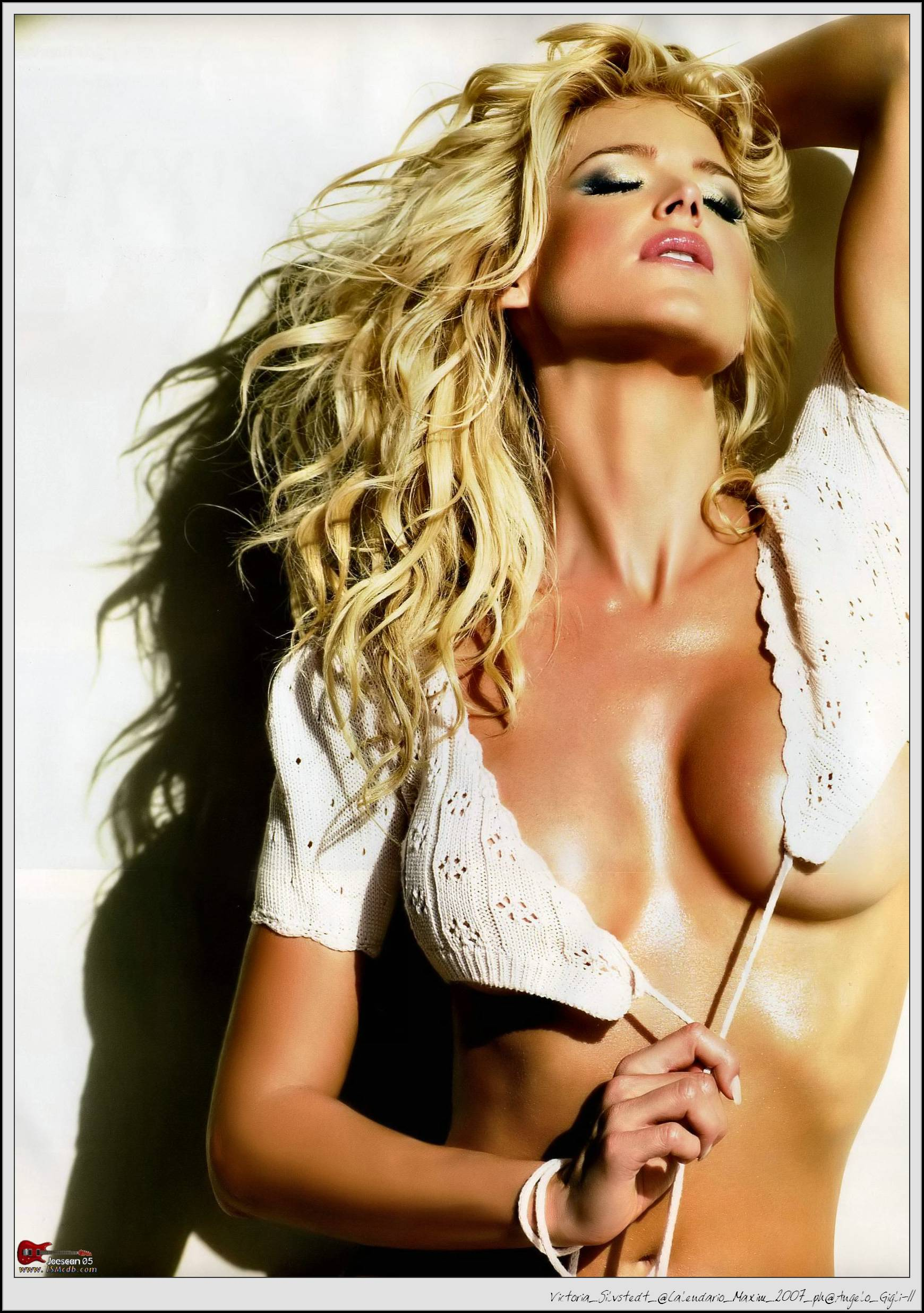 victoria silvstedt in sexy lingerie for 2007 maxim